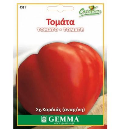 Τομάτα (Καρδιά του βοδιου), σπόρος