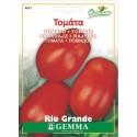Τομάτα Rio Grande