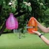 Παγίδα για Σφήκες The Buzz Honeypot Wasp Trap