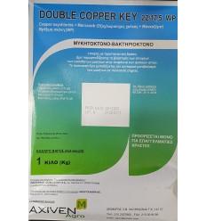 Μυκητοκόνο Double Copper Key 22/17.5 WP 1 ΚΙΛΟ