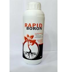 Rapid Boron 1LT
