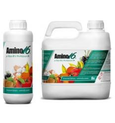 Amino 16 με B & Zn