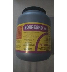 BORREGRO HA-1SP 500GR