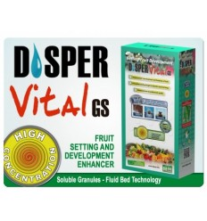 DISPER VITAL 1KG